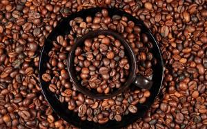 caffe miscela pasta e fagioli