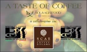 scae-italia