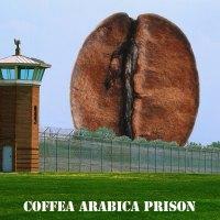 GUIDA INTUITIVA ALLA SOLUBILITA'DEL CAFFE', ALL'ESTRAZIONE E AL TDS