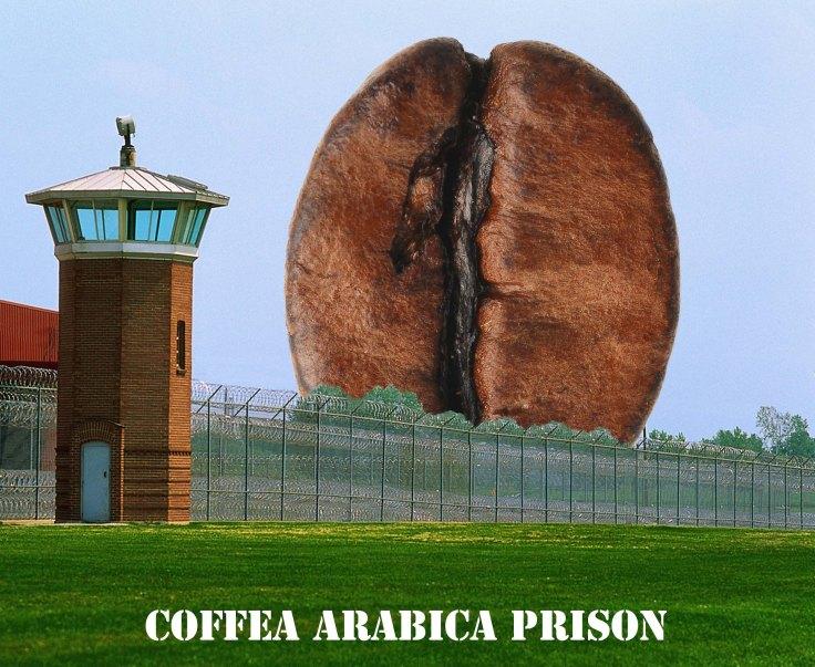 prison arabica