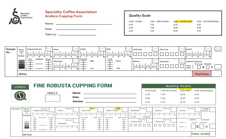 mix form cupping_001